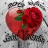 saint-valentin-2013